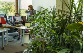 ComSider_bureaux-54